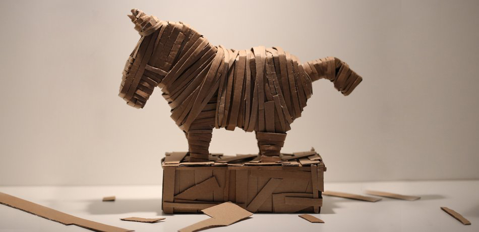 Tnk Pony